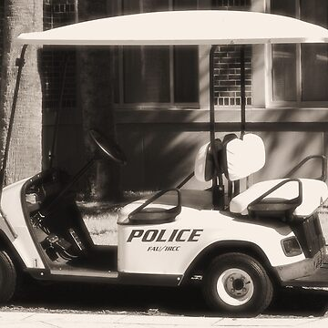 Police  by OrphieG