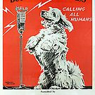 Sei nett zu Tieren 6 von Marlene Watson