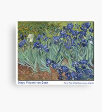 Irises by Vincent Vincent van Gogh Canvas Print