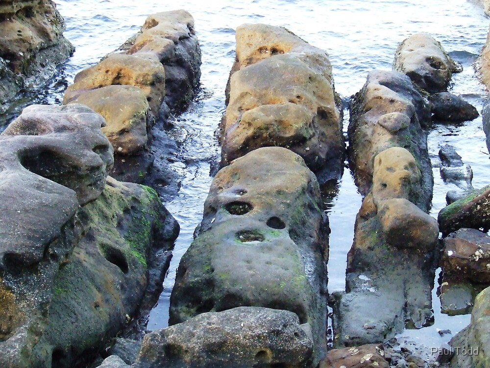 Stone Fingers by Paul Todd