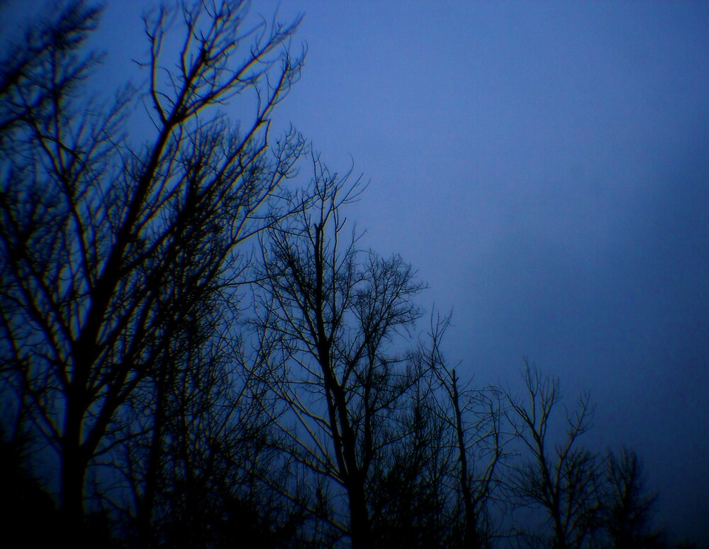 Blue Tuesday  by Jessica Hardin