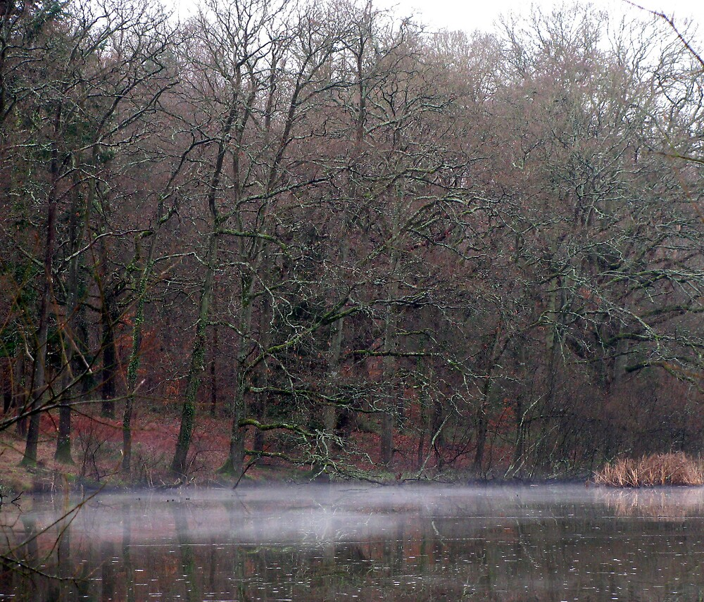 Mist on the Water by Caroline Anderson