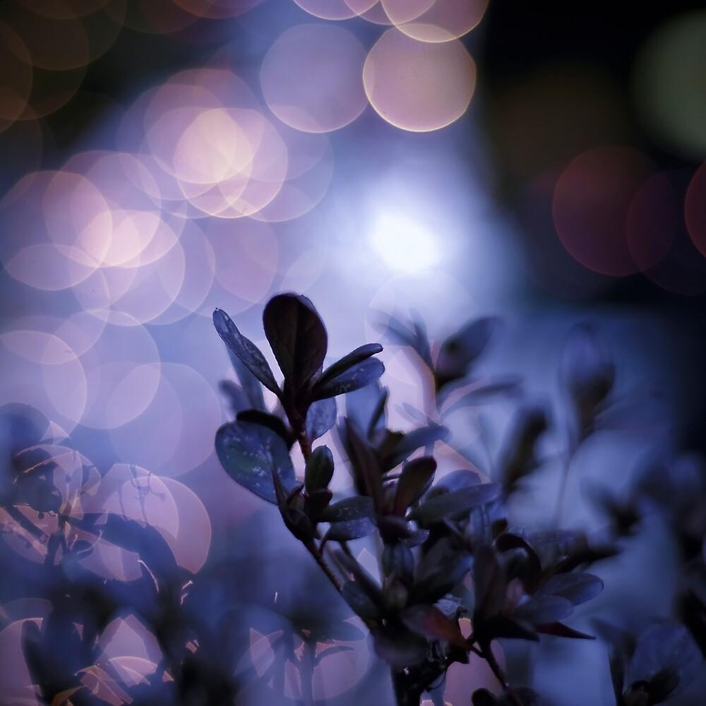 Purple Zen II by Iryna