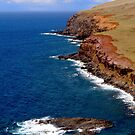 Easter Island cost, pacific ocean by Monica Di Carlo