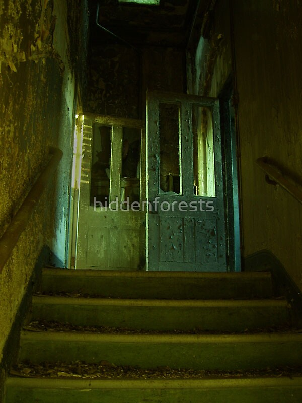 Cane Hill Mental Asylum - Make your choice by hiddenforests