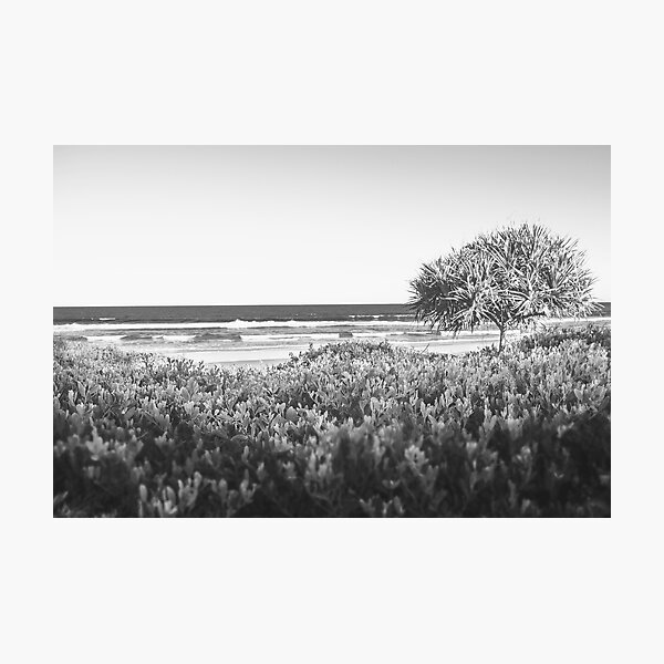 Lennox Head Beach Photographic Print