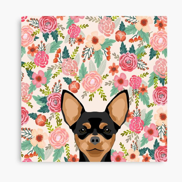 Chihuahua dog floral pet pure breed gifts for chihuahua black and tan Canvas Print