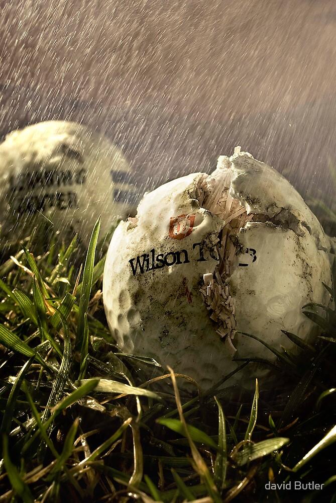 """Red Neck Golf"" by david Butler"