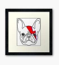 A-Dog-Insane - David Bowie Aladdin Sane French Bulldog Lightening Bolt Framed Print