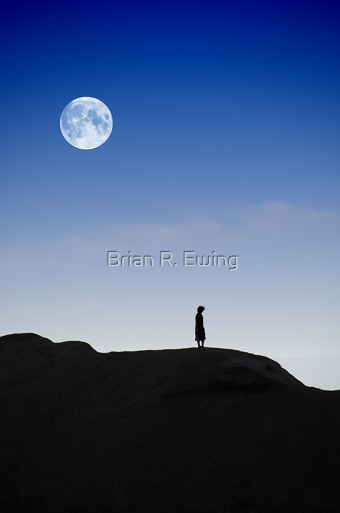 I Wish I Could Fly by Brian R. Ewing
