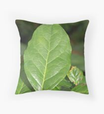 """Salal"" Throw Pillow"