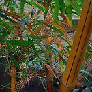 Bamboo Garden by Gordon Beck