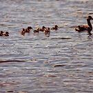 Mother's Little Helpers by mwmclaren