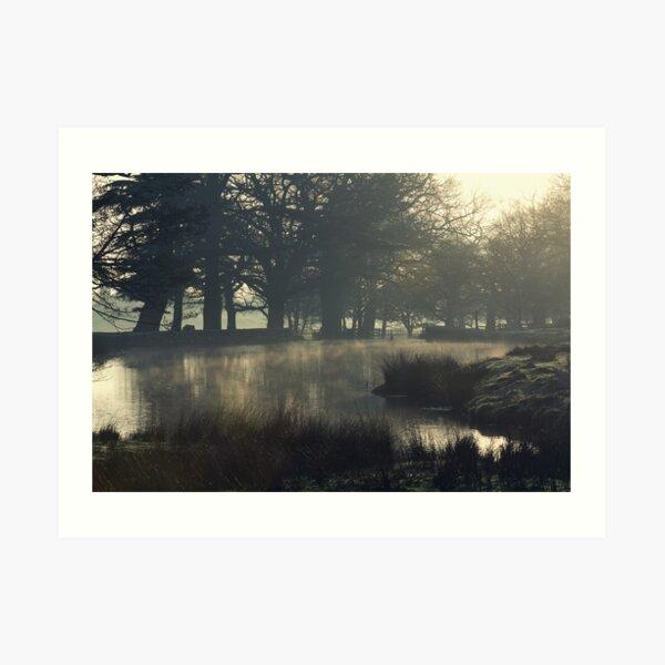 Bradgate Park, Leicester Art Print