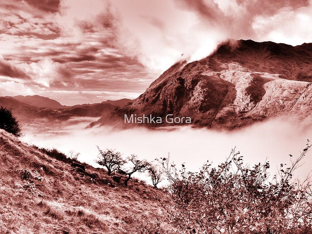 Snowdonia by Mishka Gora