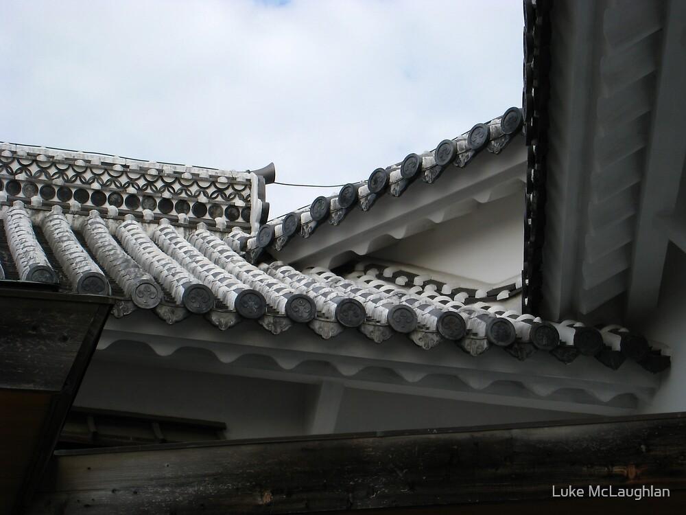 Castle Roof Focus by Luke McLaughlan