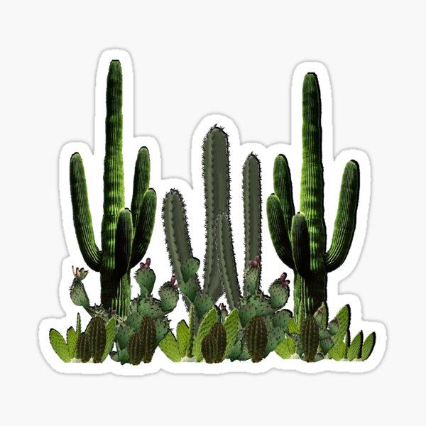 Desert Haven Sticker