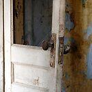 The Open Door by Brian R. Ewing