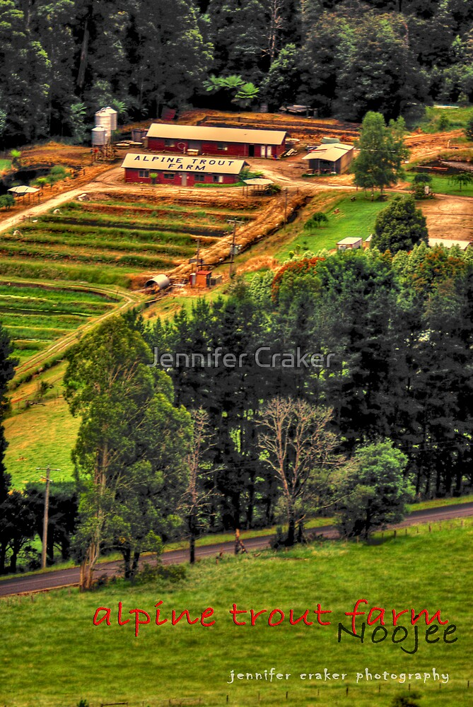 Alpine Trout Farm by Jennifer Craker
