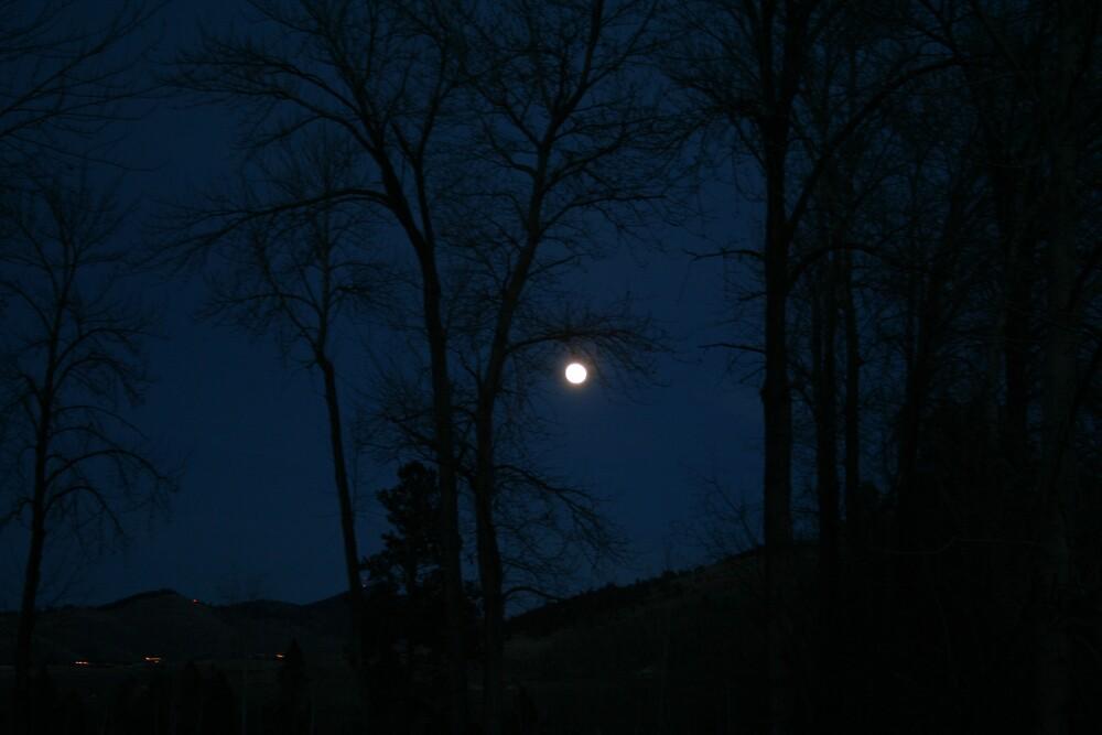 Moon Shot by tdooley