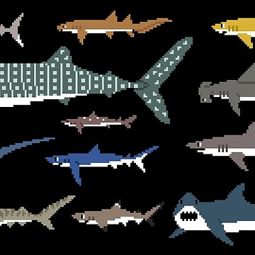Sharks - The Kids' Picture Show - Pixel Art by KidsPictureShow