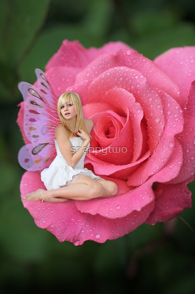 Rose Fairy by snappytwo
