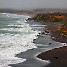 Central California Coast - Near Cambria, California by Buckwhite