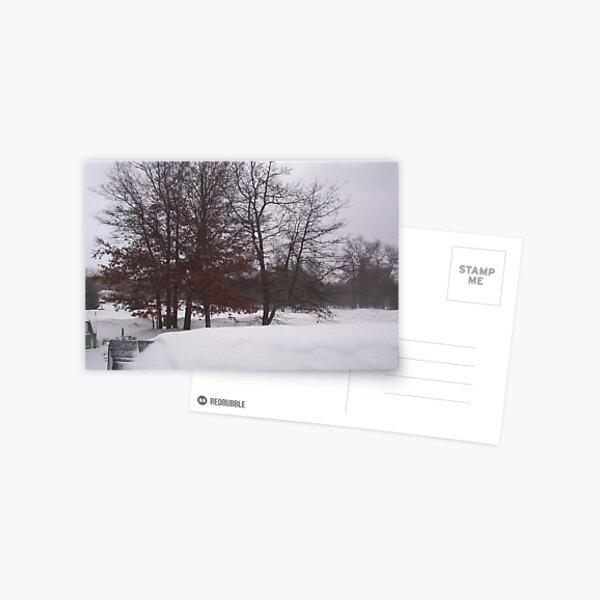 snow, snow, snow, Postcard