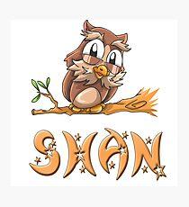 Shan Owl Photographic Print