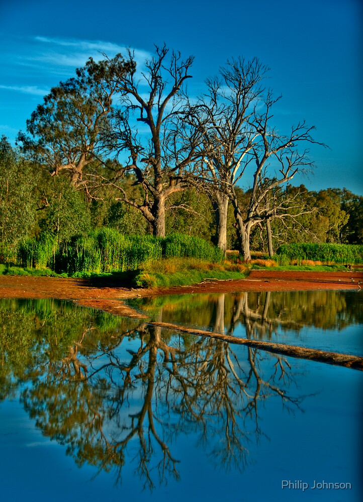 Mirror - Wonga Wetlands, Albury NSW - The HDR Experience by Philip Johnson
