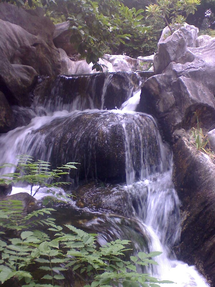 the waterfall by Raven Smith