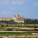 Mdina, Malta by Alison Cornford-Matheson