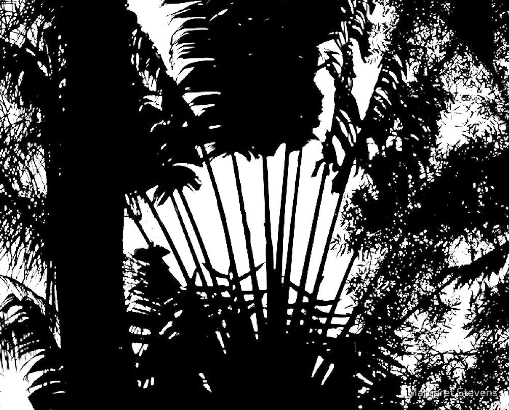 Silhouette by Margaret Stevens