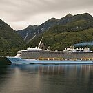 Cruising Milford Sound (New Zealand) by TonyCrehan