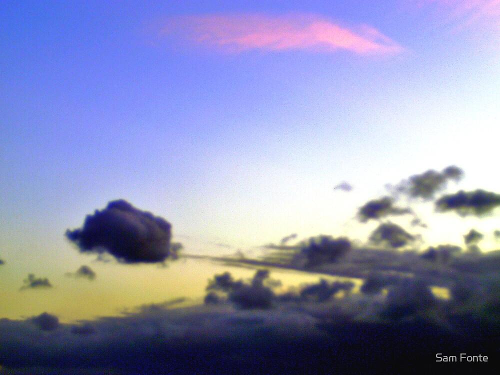 fly away.... by Sam Fonte