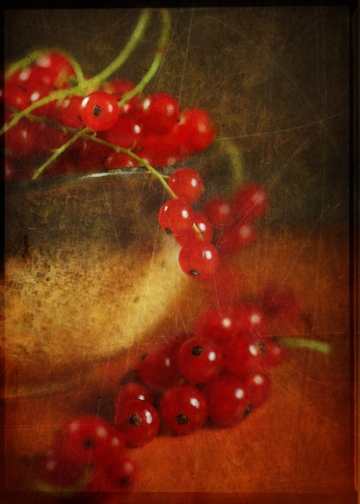Red Currant  by Iryna
