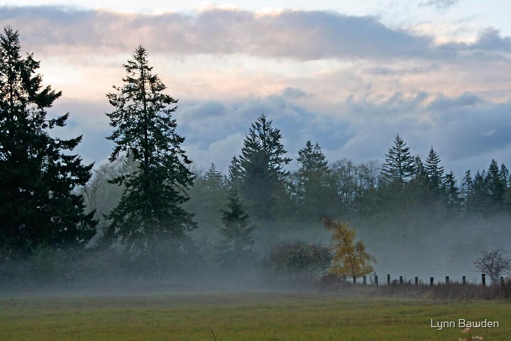 """""""Valley Fog"""" by Lynn Bawden"""