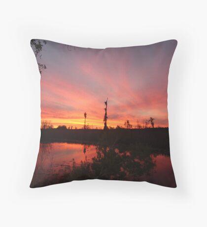 Sunset Lightshow Throw Pillow