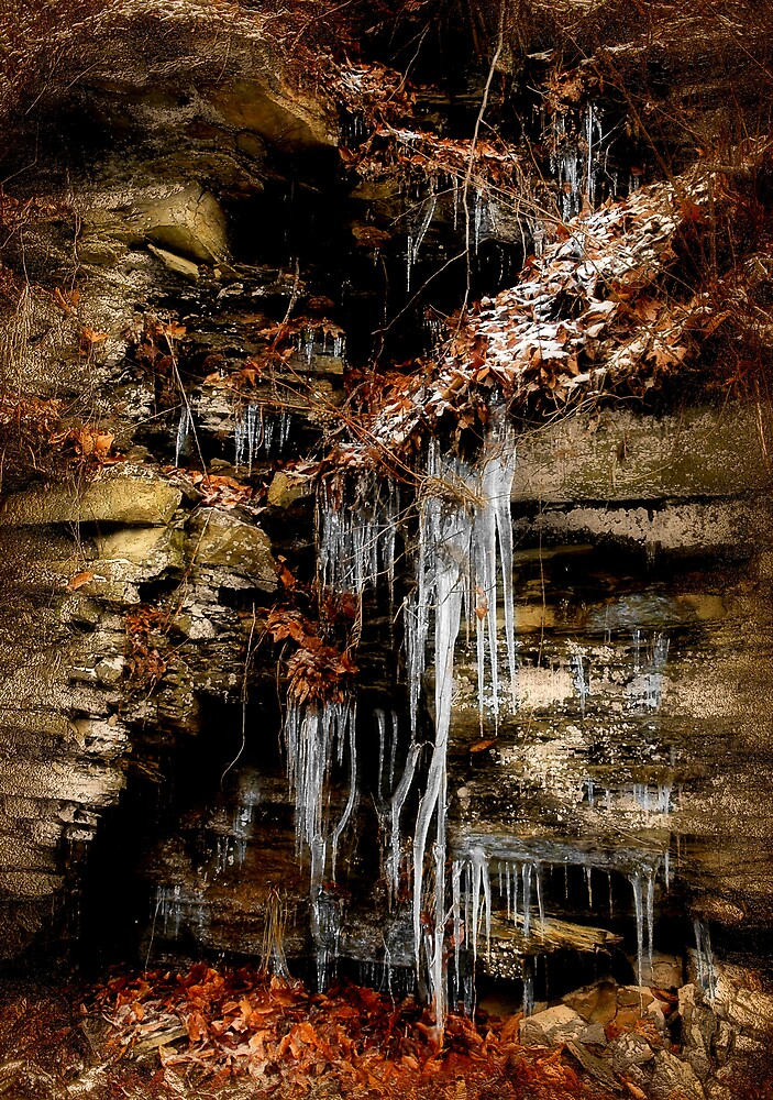 Icicle Falls by Tim Lasure