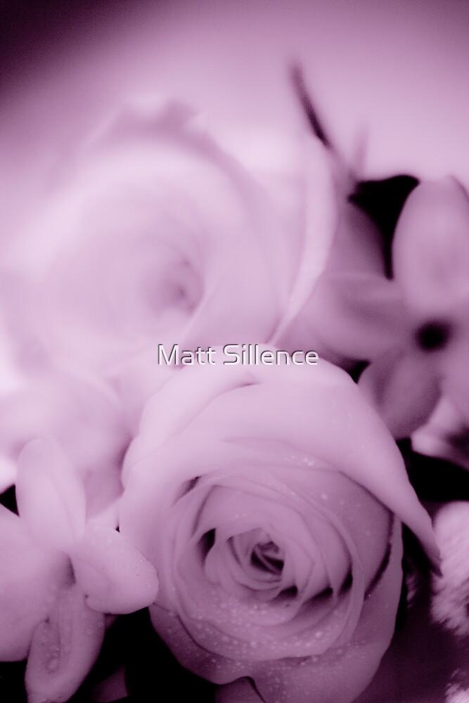 Rose Alive by Matt Sillence