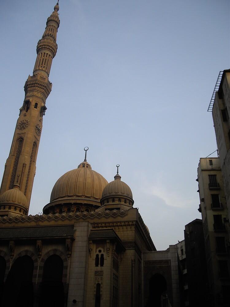 cairo masjid by sami al-haj