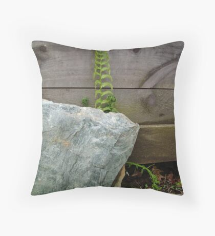 Fern and Rock Throw Pillow