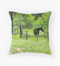 Bluff is a Horse's Paradise  Throw Pillow