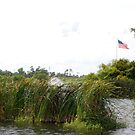 Marshlands with American flag by NicPW