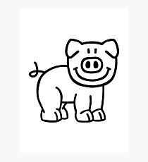 Cute pig Photographic Print