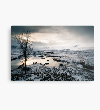 The Black-and-White Mount Metal Print