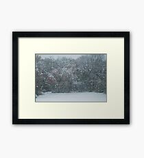 Fall Snowstorm Framed Print