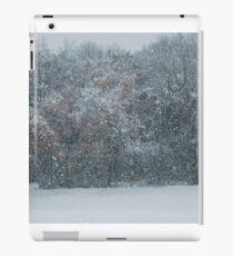 Fall Snowstorm iPad Case/Skin