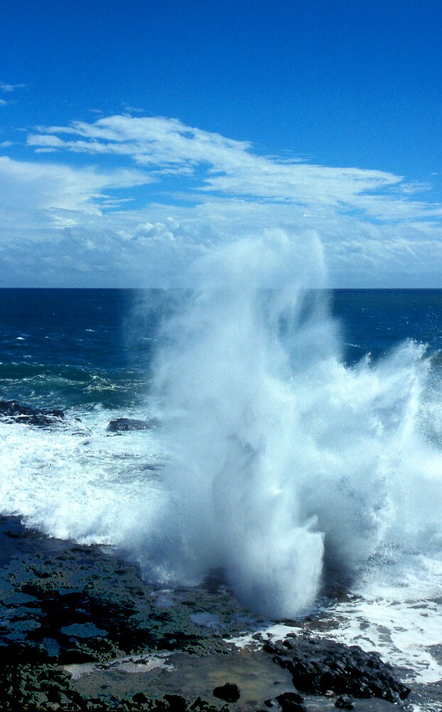 Spouting Horn by Virginia Maguire