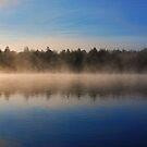 foggy morning  by Luca Renoldi